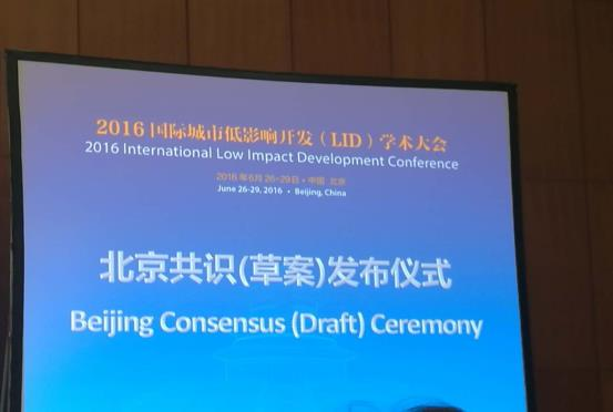 CSDI in 2016 LID 05